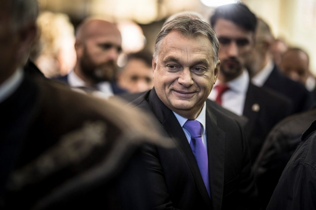 Company of Hungarian Prime Minister's brother received EU subsidy yet again